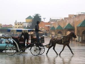 Morocco_2009-2010 018