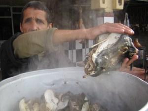 Morocco_2009-2010 039